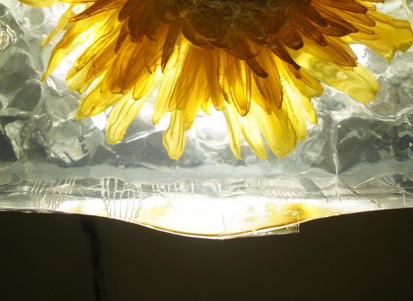 鲜花琥珀水晶雕塑制作2