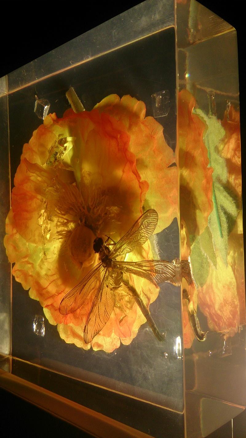 鲜花琥珀 动物琥珀 水晶雕塑 透明雕塑 玻璃雕塑 亚克力雕塑_2.JPG