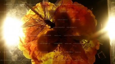 水晶雕塑 琥珀雕塑 透明雕塑 鲜花雕塑 蜻蜓雕塑 雕塑设计 雕塑创作 四川雕塑 成都雕塑